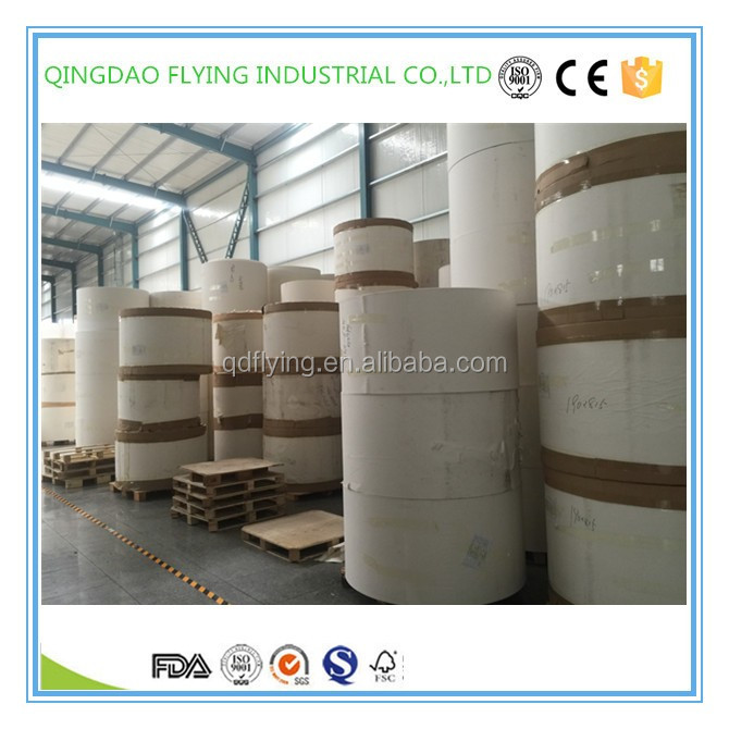 Top quality pe coated paper of paper in rolls for cups