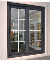 sliding windows with window screens/mosquito screen