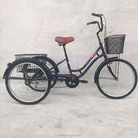 24TR007 24 Inch Adult Tricycle