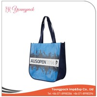 Factory Price High Quality Non Woven Shopping Bag