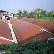 biogas digesters for waste treatment