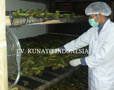 Super Quality Dried Soursop Leaves (Vacuum Packaging & -10 Degrees Celcius Cooler Storage) (soursop-leaves.com)