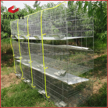 Welded Rabbit Farming Cage ( Quality Guaranteed, Competitive Price )