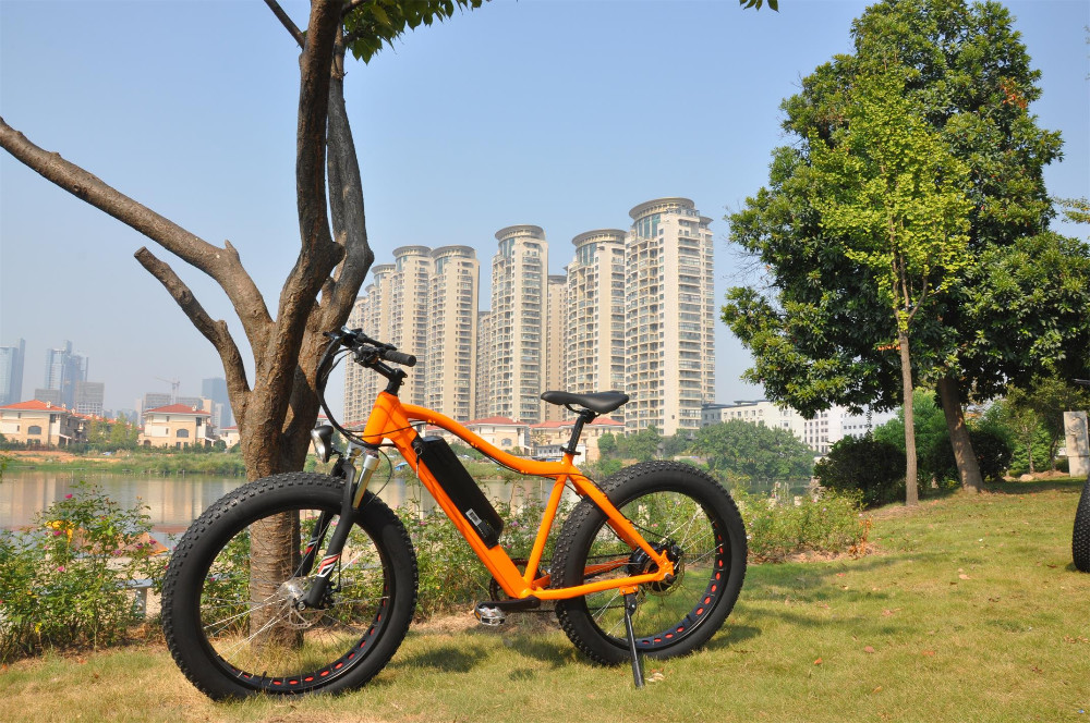 EN15194 most eco 36v 250w 26 inch electric vehicle,hidden battery ebike, electric mountain bike foldable