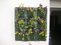 Garden PE Vertical Wall Flower/ Herb Planting Bag,Wall Flower Growing Bag,Recycled Wall Hanging Planter Bag