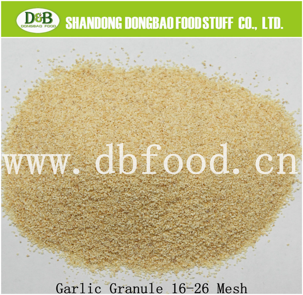 Garlic Granules in meat rubs and salad dressings