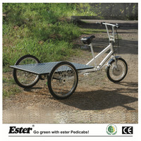 Electric Flatbed Trike for Cargo