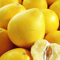 Buy fruit honey tasty wholesale pomelo RED pulp and WHITE pulp pomelo