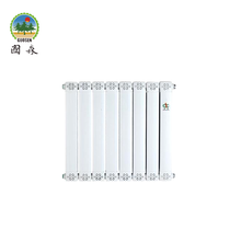 Hot Sales High Quality SHENGCHUN Copper and Aluminium Water Heating Radiator