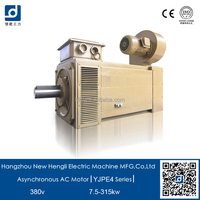 NHL IE4 3 phase squirrel cage induction motor
