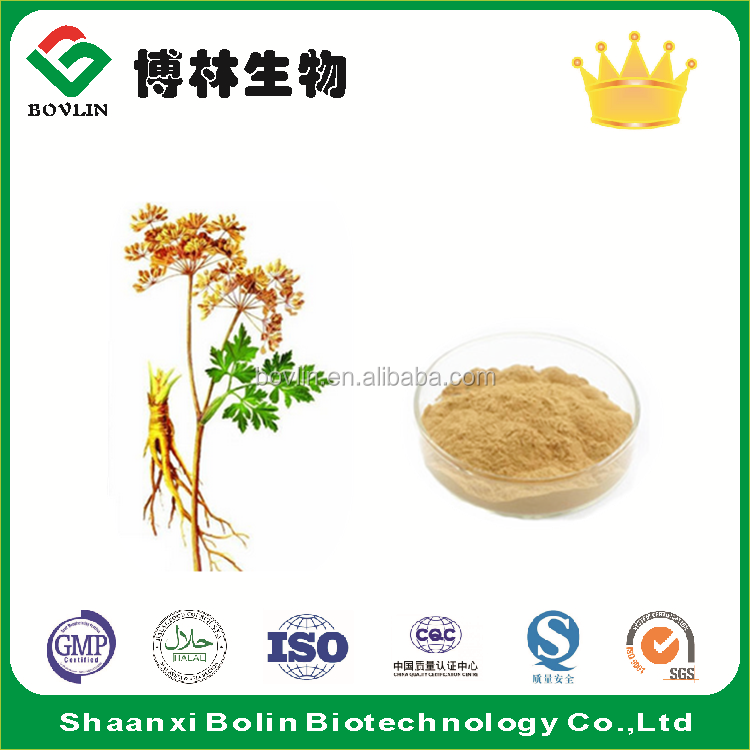 Bolin Factory Supply Angelica Root Extract Powder
