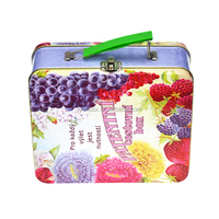 wholesale tin lunch box with lock and key kids lunch box with handle lock metal tin lunch box