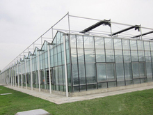 agriculture typhoon resistance glass greenhouse manufacturer