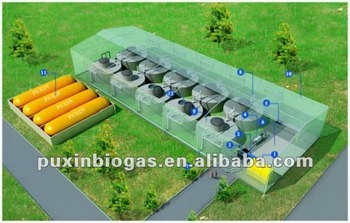 PUXIN medium and large size biogas plant for electricity