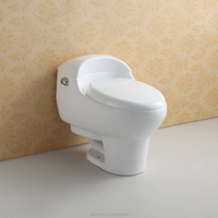 Single Flush Ceramic Toilet