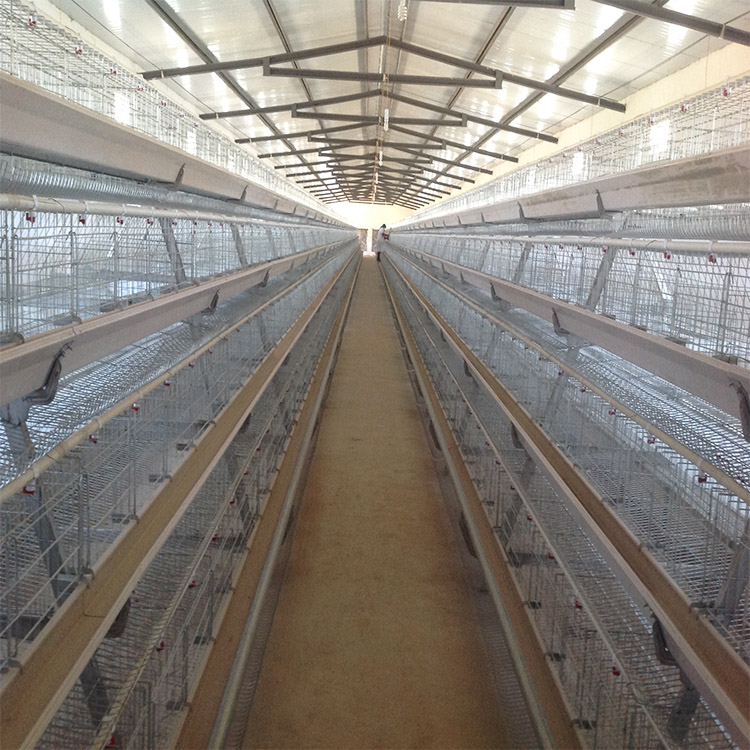 Chinese factory new design battery type breeding chicken cage for chickens