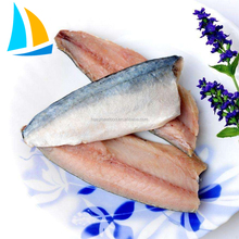 Healthy food excellent flavor fresh raw material frozen mackerel fillet