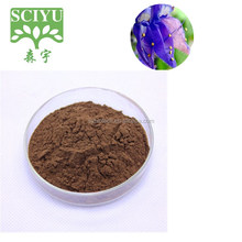 Hot selling 100% Natural Coleus forskohlii Extract 10%Forskolin HPLC