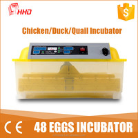 Hot!Mini automatic chicken incubator /egg hatchers 48 eggs for sale YZ8-48