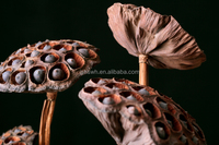 New Dried Flowers Home Decoration Artificial Flower lotus root Dried flower