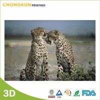 Manufacturer 3D lenticular wall picture
