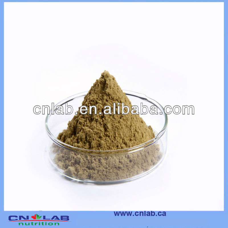 OEM/ODM 100% Natural Organic White Tea Extract