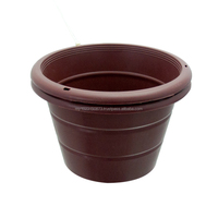7 in Flower Pot