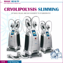 4 Handles Newest FDA Approval Cryolipolysis Fat Freezing Machine Italy Reviews