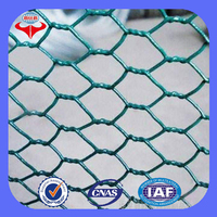 China supplier high quality double twist chicken wire mesh/chicken coop hexagonal wire netting (ISO 9001factory)