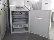 MKX-2 china factory supply 176 egg incubator for sale