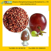 New China Products For Sale Grape Seed Extract Proanthocyanidin