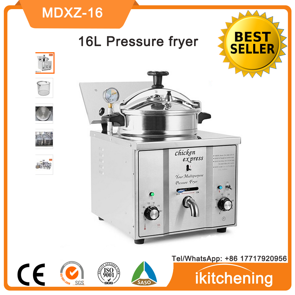 French Fries Frozen Fryer machine, home pressure fryer for chicken wings, frozen chips 16L