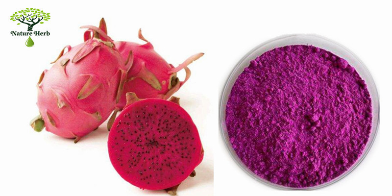 Dragon fruit powder7.jpg