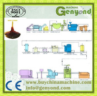 Small scale fruit syrup processing line / date syrup processing equipment