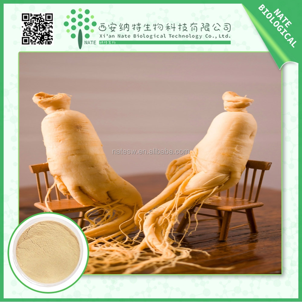 Top Quality panax ginseng root extract powder ginsenosides ginsenoside 80% traditional Chinese Edicine
