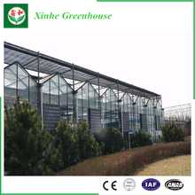 Cheap fruit vegetable flower glass greenhouse for sale