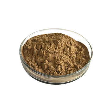 Organic certified plantation Coriolus versicolor Extract powder Polysaccharide 10% 30% 50%