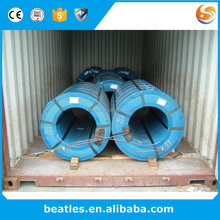 Nippon Paint Prepainted Galvanized Steel Coil or Sheet Ppgi & Ppgl