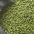 2015 crop Green Mung Beans, Chinese Green Mung Bean 3.0mm, 3.25mm