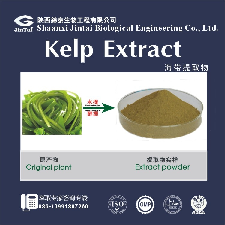 High quality Anti-cancer Brown powder marine algae extract