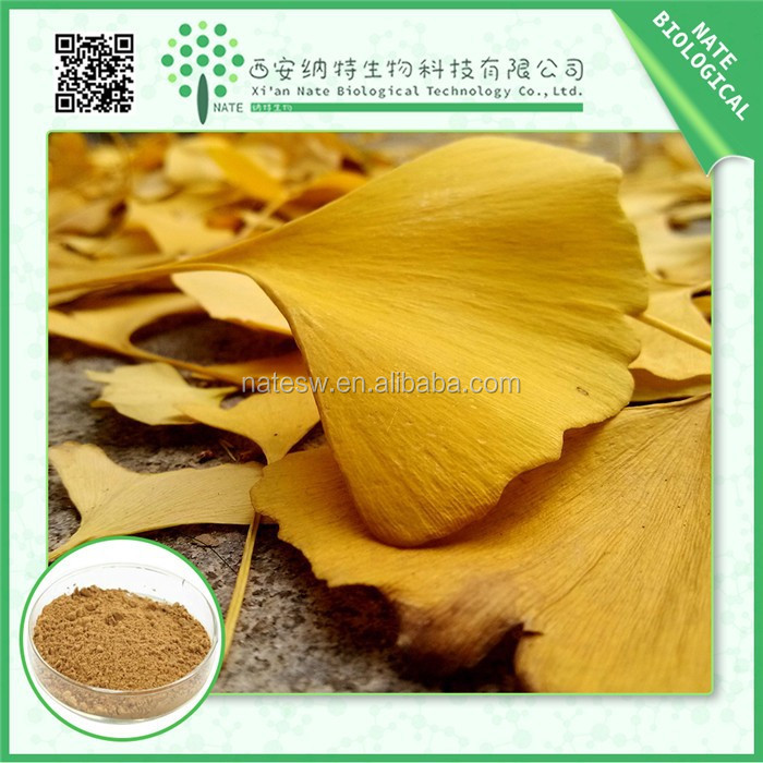wholesale total ginkgo flavone glycosides 24% ginkgo biloba extract