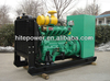Durable and reliable high protection class 37.5KVA Compressed Natural Gas geneset price