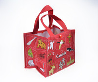 Customs Print Canvas Lunch Tote Bag