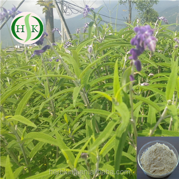 Professional Supplier For Forskolin Powder Form Coleus Forskohlii