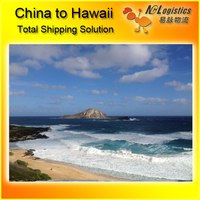 sea freight from Shanghai to Hilo,HI