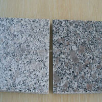 Landscape Cheap Grey Granite Paving Stone