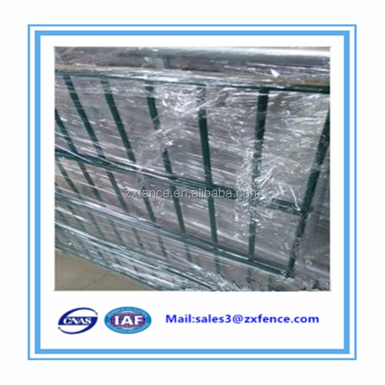 Alibaba China Supplier Welded Cheap Twin Wire Mesh/double wire
