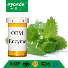 Eyoson OEM enzyme Lemon Balm 100 tablets Organic Herbal Supplement Traditionally used for relaxation Full Spectrum Extract