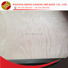 19mm Thick Plywood Prices