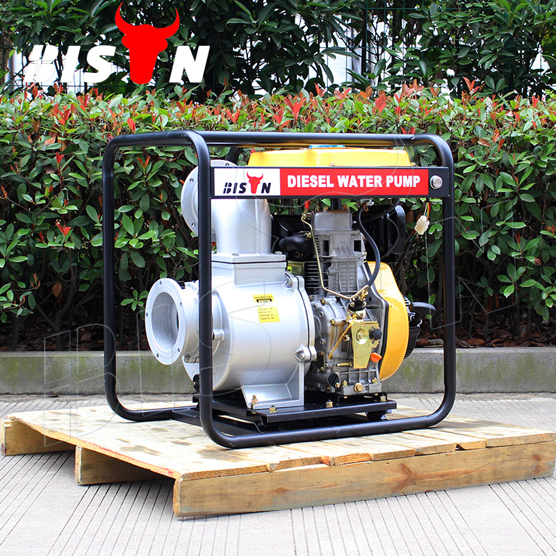 BISON(CHINA) BSD60(E) Electric Start Centrifugal 192F 10 HP Diesel Engine Driven 6 Inch Water Pump